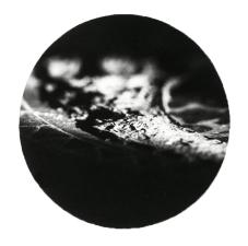 sian028-1