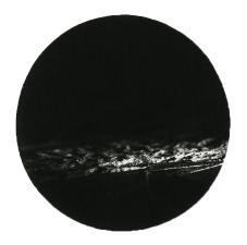 sian031-5